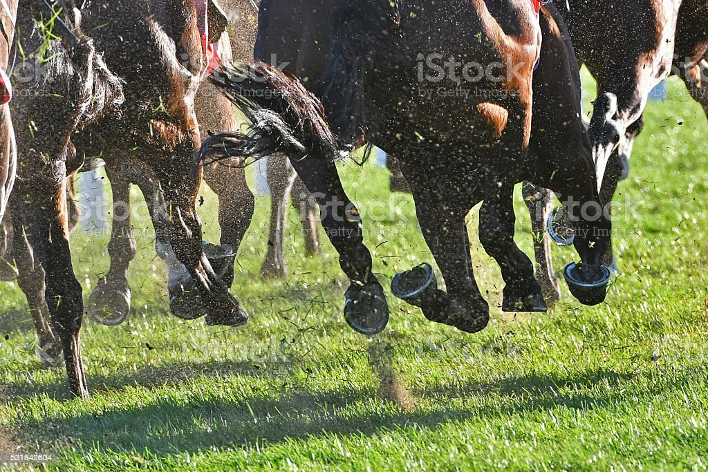Horse racing action stock photo