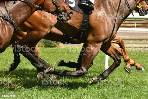 Horse racing action picture id863927546?b=1&k=6&m=863927546&s=612x612&h=f i2kbmhilbrtimlrd58gef 7woauc3drdna fwpqbk=