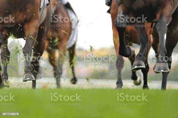 Horse racing action picture id957245678?b=1&k=6&m=957245678&s=612x612&h=btc9jyxxoq9ogd2edf45uqjm5pkgto rkqfc 8e hj4=