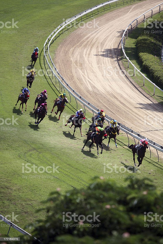 Horse Racing from above 3 royalty-free stock photo