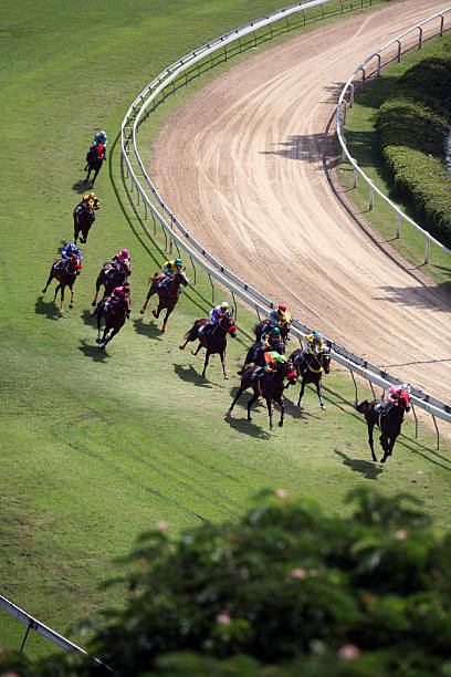 Horse Racing from above 3 stock photo