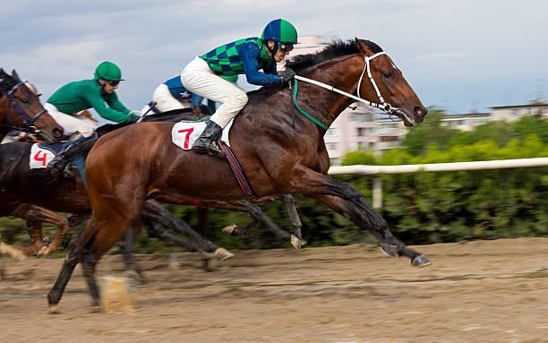 Horse racing  in Nalchik. stock photo