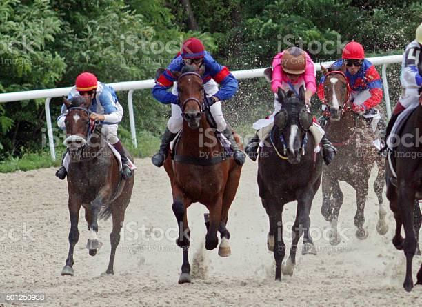 Horse racing in pyatigorsk picture id501250938?b=1&k=6&m=501250938&s=612x612&h=gbhookdrikucq9uxeffu3pzx3g8gttxgnbu9jkmixym=