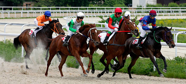 Horse racing in Pyatigorsk. stock photo