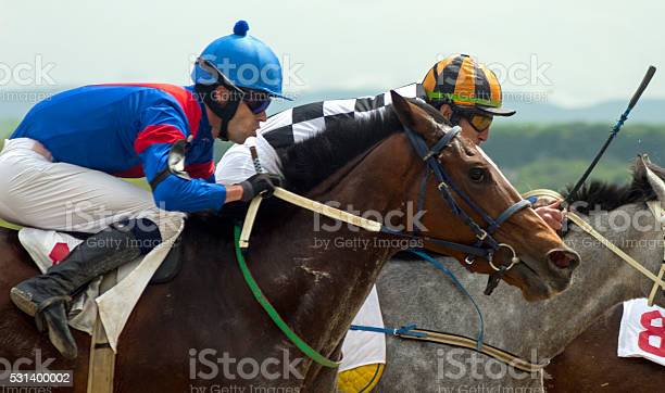 Horse racing in pyatigorsk picture id531400002?b=1&k=6&m=531400002&s=612x612&h=m9twimvi g9kacrykq5qngatks81ggxddwxlea1fg60=