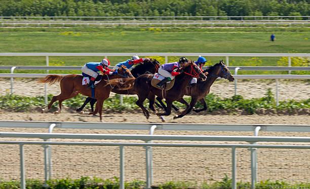 Horse racing in Pyatigorsk stock photo