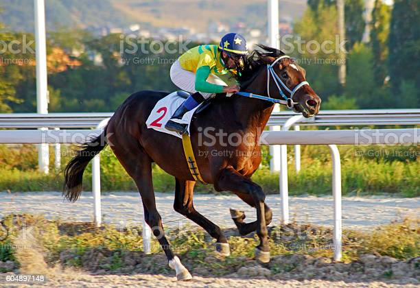 Horse racing in pyatigorsk picture id604897148?b=1&k=6&m=604897148&s=612x612&h=zih4ifir82rf9l6tcek2suhv6d2pr058nr7xrl8rpqs=