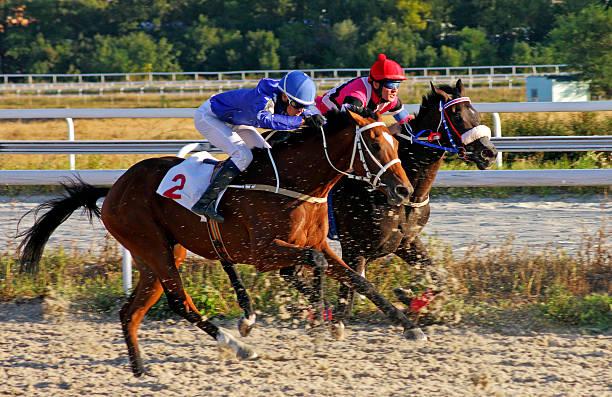 경마 퍄티고르스크.  - horse racing 뉴스 사진 이미지