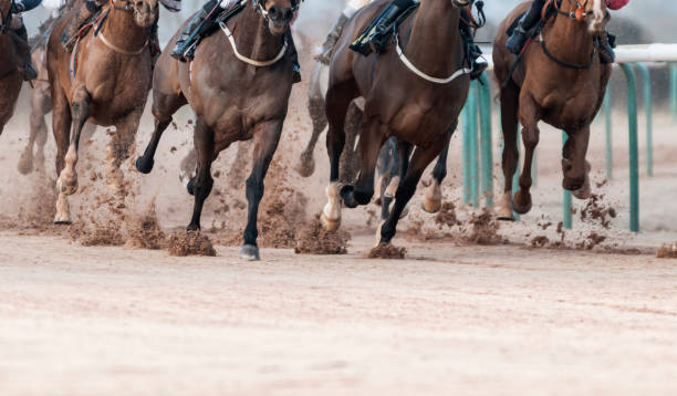 Horse Racing on Track with Copy Space stock photo