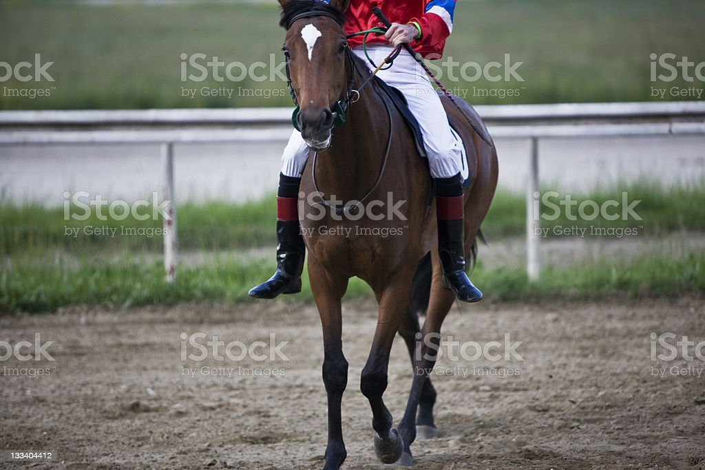 Horse Racing royalty-free stock photo