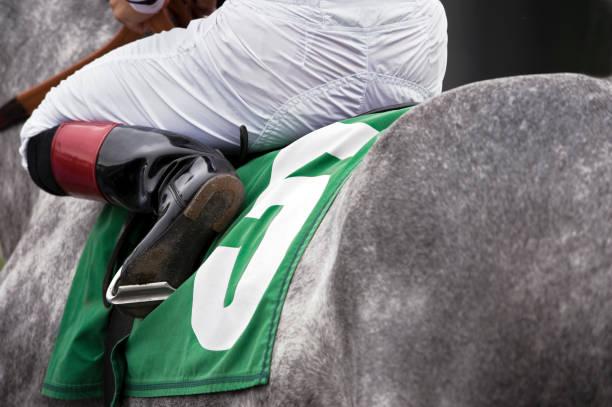 Horse racing picture id154885572?b=1&k=6&m=154885572&s=612x612&w=0&h=2xvs2mbdn 15arshydoc7vtpubauponiocqsncsecwa=