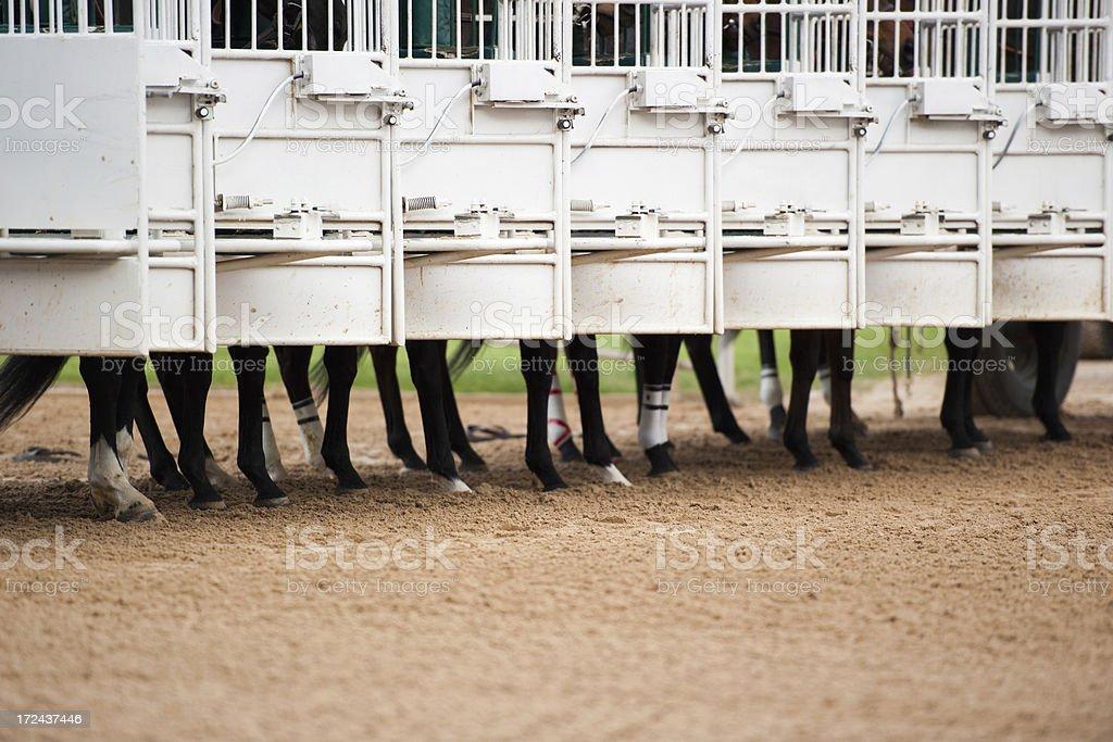 Horse racing royalty-free stock photo