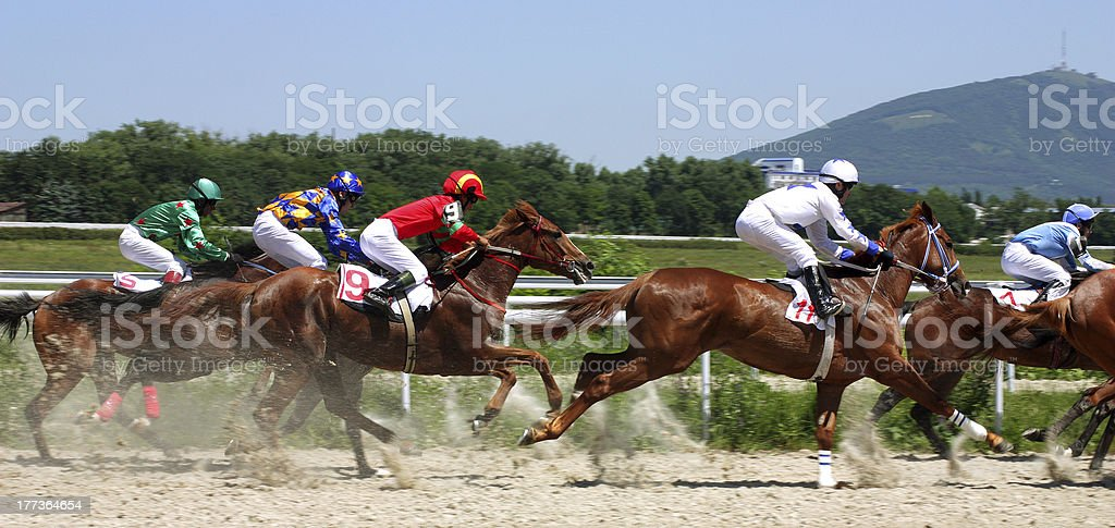 Horse racing. stock photo