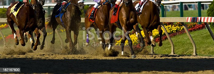 Thoroughbred horses racing into the first turn on a dirt track as the dirt flies