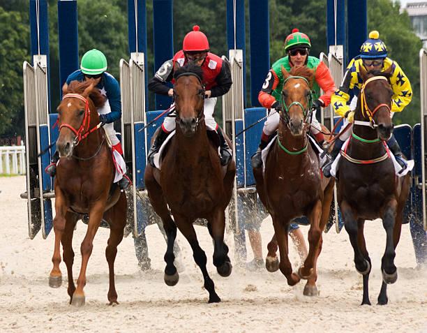 Horse racing stock photo