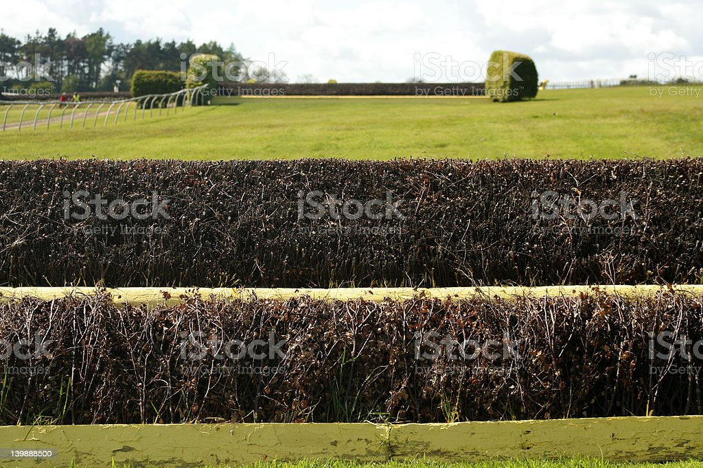 Horse racing Steeple chase fence royalty-free stock photo