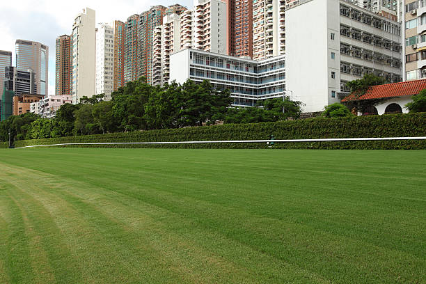 Horse Racing Track (XXXL)  sha tin stock pictures, royalty-free photos & images