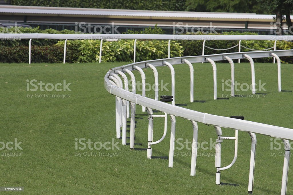 Turf track in Racecourse.