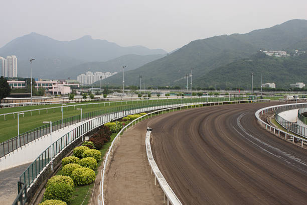 Horse Racing Track Turf and Dirt track in Racecourse. sha tin stock pictures, royalty-free photos & images