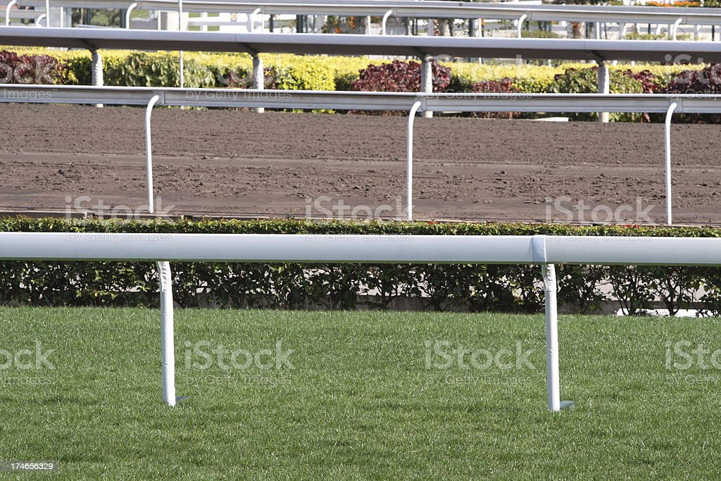 Turf and Dirt track in Racecourse.