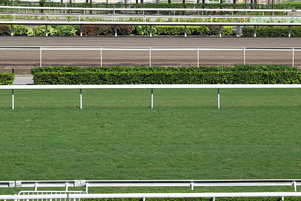 Horse Racing Track Horse racing track with turf course and dirt course. new territories stock pictures, royalty-free photos & images