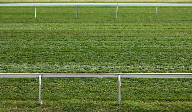 Horse Racing Track Turf track in Racecourse. sha tin stock pictures, royalty-free photos & images