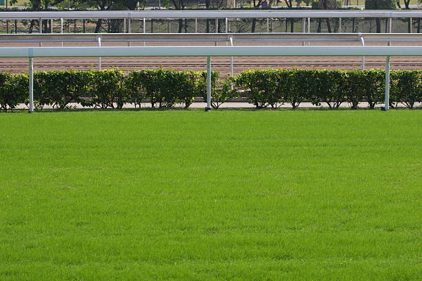 Horse Racing Tracks  sha tin stock pictures, royalty-free photos & images