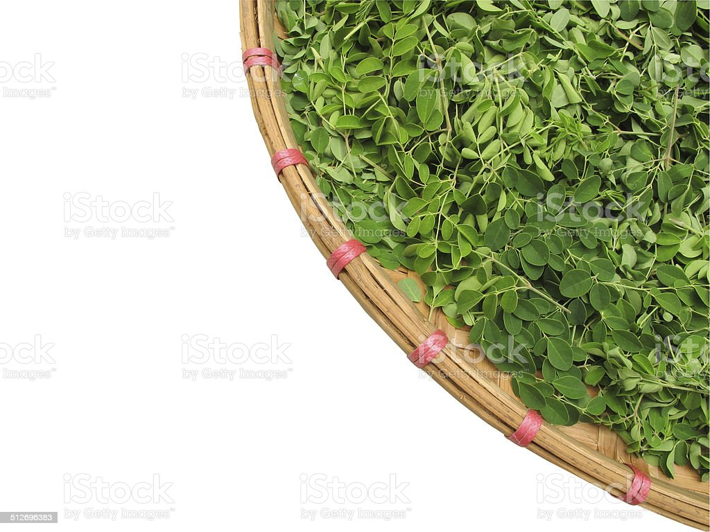 Horse radish leaf in the wicker basket stock photo