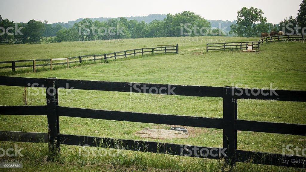 Horse Ranch stock photo