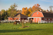 Horse Ranch with Pasture, Stable Barn and Farmhouse in Autumn