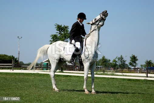 Horse resisting during contest English style.