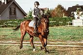 Horse ridding lessons