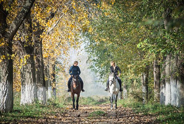 Horse ride picture id527171935?b=1&k=6&m=527171935&s=612x612&w=0&h=07fiuwwoma0s6camn ct8 j3ug5fnx7tug jmjvx9ve=