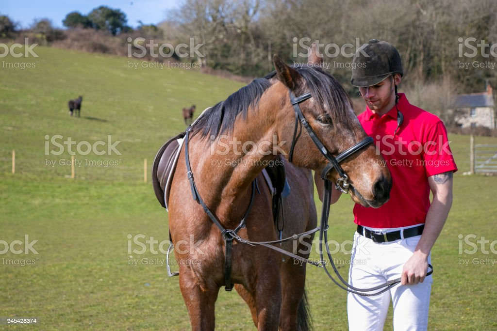 Horse rider in traditional horse riding clothing standing next to his horse in field with horses in background stock photo