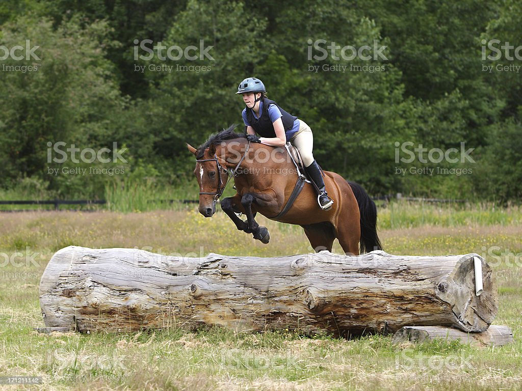 Horse & Rider Navigating Log Jump royalty-free stock photo
