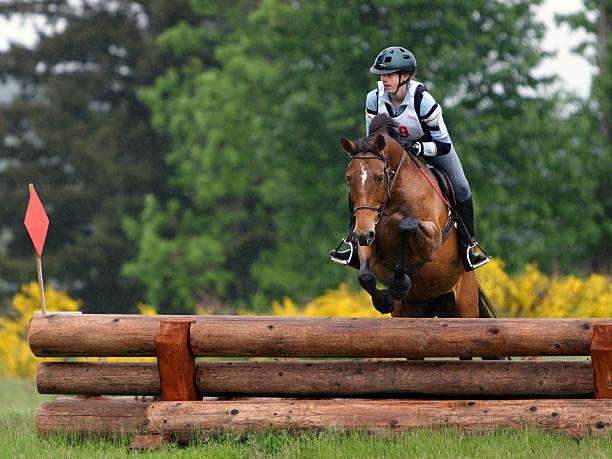 horse & rider navigating stacked log jump - hästhoppning bildbanksfoton och bilder
