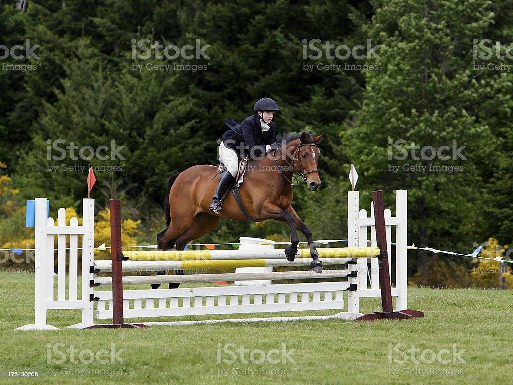 Horse & Rider Navigating Stadium Jump stock photo