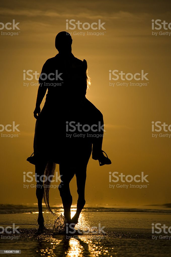 Horse rider on the beach stock photo