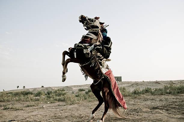 Koń rider – zdjęcie