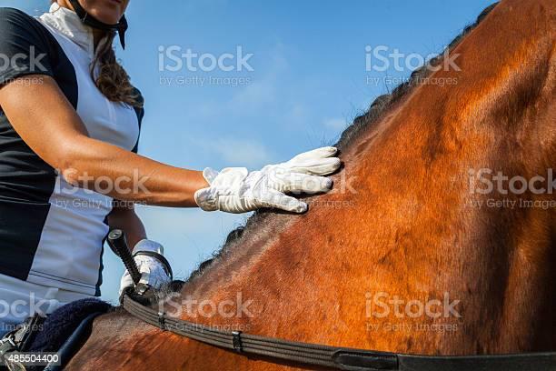 Horse rider picture id485504400?b=1&k=6&m=485504400&s=612x612&h=  jaqxzmx7hwwkrfct4q3qh3yqm3fjrgib8ds2shs9y=
