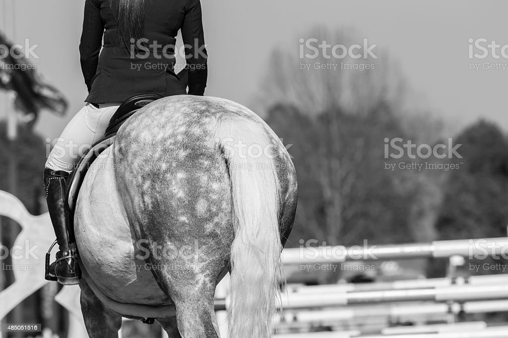 Horse Rider Show Jumping Vintage stock photo