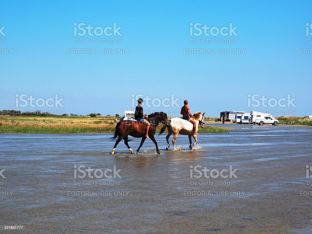 Pferd Reiter – Foto