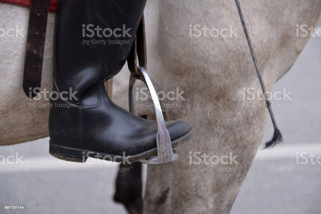 Horse Riding Boots Close Up Stock Photo Download Image Now Istock