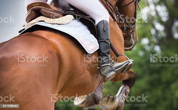 Photo of Horse riding dressage