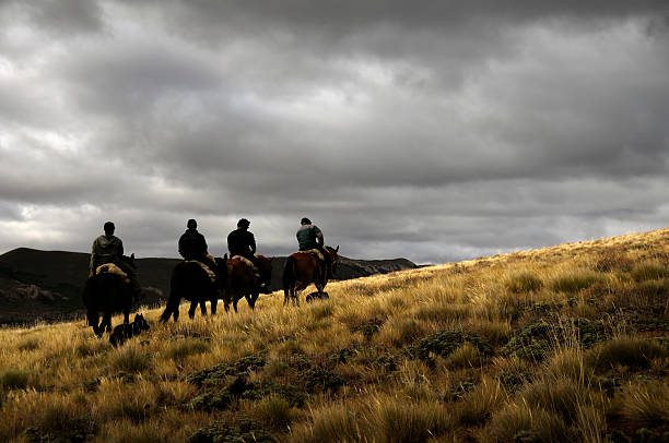 Horse Riding in Bariloche, Patagonia, Argentina  steppe stock pictures, royalty-free photos & images