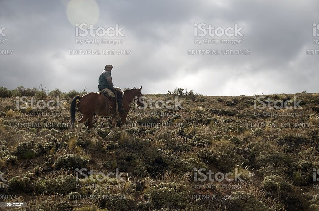 Horse Riding in Patagonia, Bariloche, Argentina royalty-free stock photo