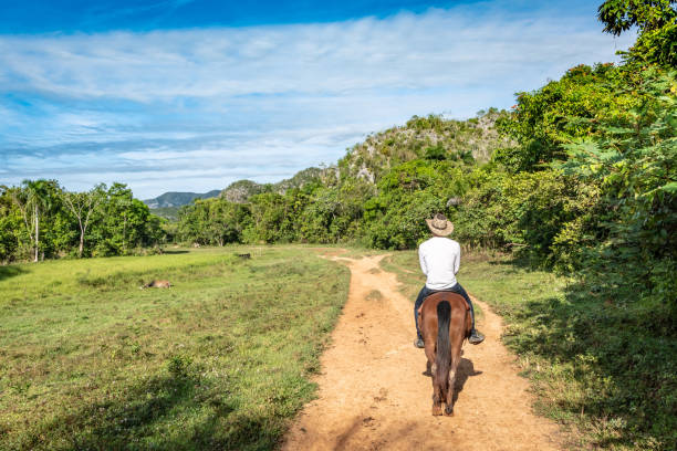 Horse riding in the Vinales valley in Cuba stock photo