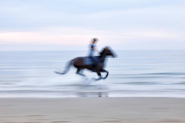 Horse riding on the beach picture id1159540447?b=1&k=6&m=1159540447&s=612x612&w=0&h=jbej g4 3f3dtd4vnfp40ericj5ok0kvepxjprf njw=