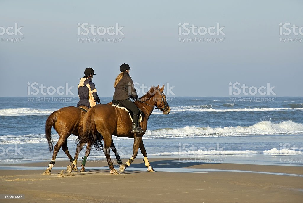 Horse Riding royalty-free stock photo