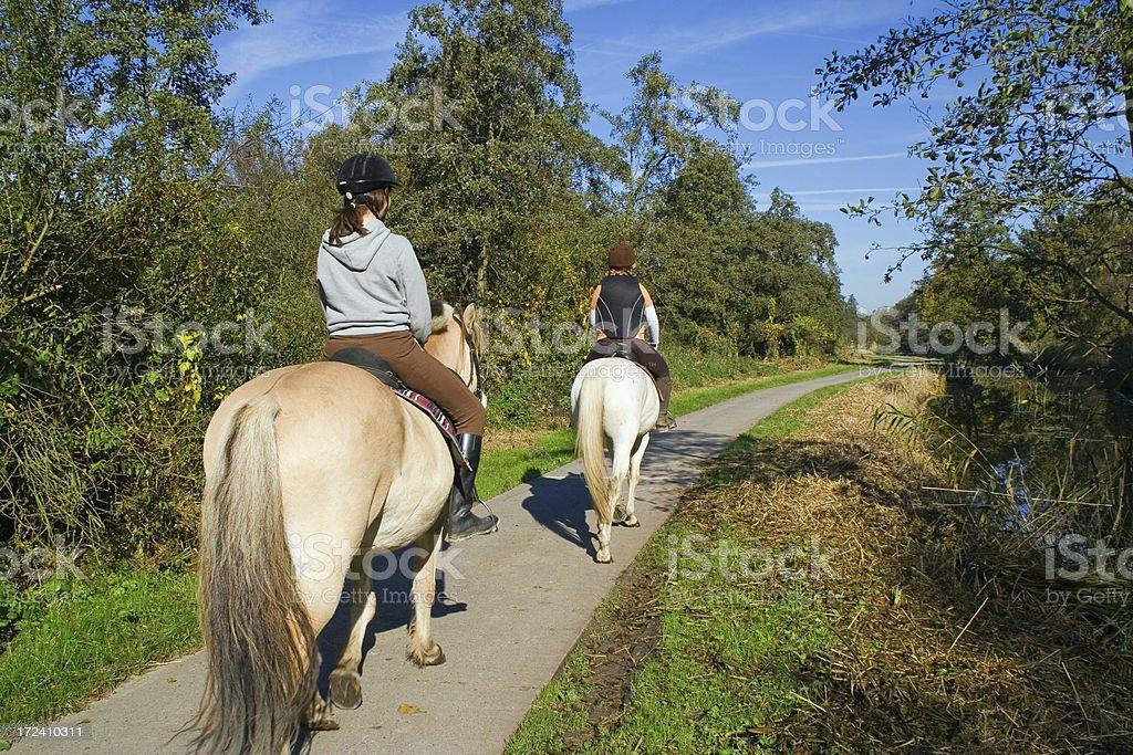 Horse riding # 4 stock photo